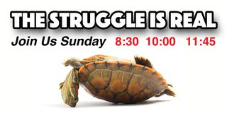 The Struggle is Real - Outside Banner